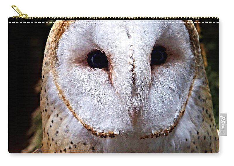 Barn Owl Carry-all Pouch featuring the photograph Barn Owl by Anthony Jones
