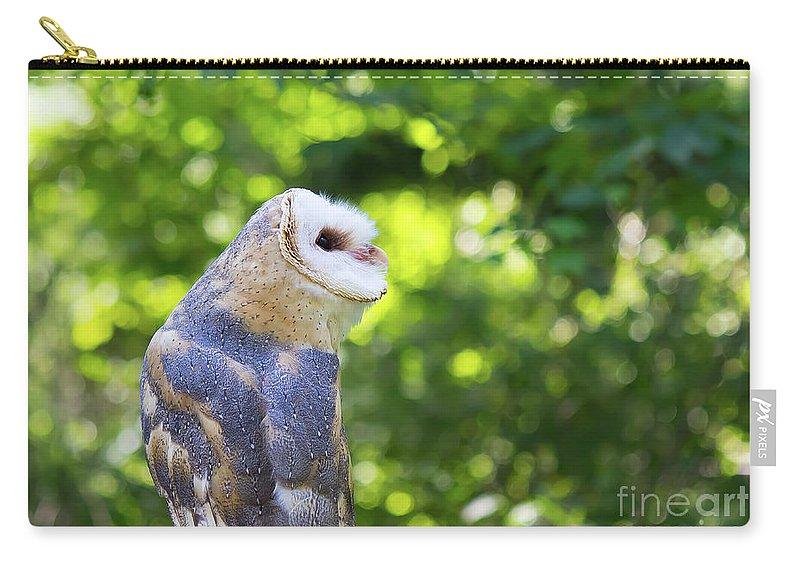 Barn Owl Carry-all Pouch featuring the photograph Barn Owl Looking Skyward by CJ Park