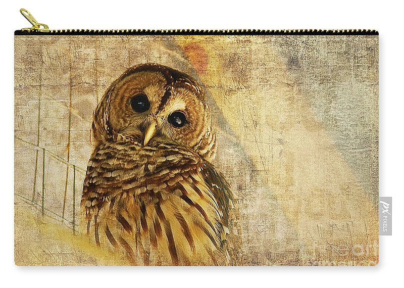 Owl Carry-all Pouch featuring the photograph Barred Owl by Lois Bryan