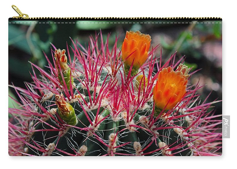 Barrel Cactus Carry-all Pouch featuring the photograph Barrel Cactus II by Michiale Schneider