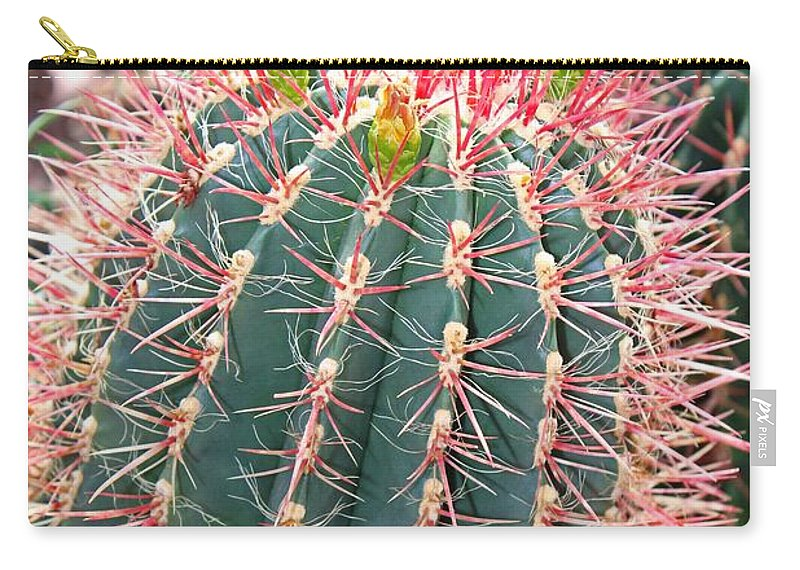 Barrel Cactus Carry-all Pouch featuring the photograph Barrel Cactus by Michiale Schneider