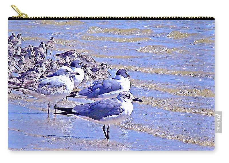 Seagulls Carry-all Pouch featuring the photograph Basking On The Seashore by Marilyn Holkham