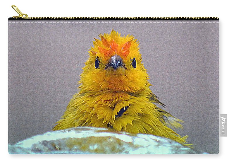 Bird Carry-all Pouch featuring the photograph Bath Time Finch by Lori Seaman