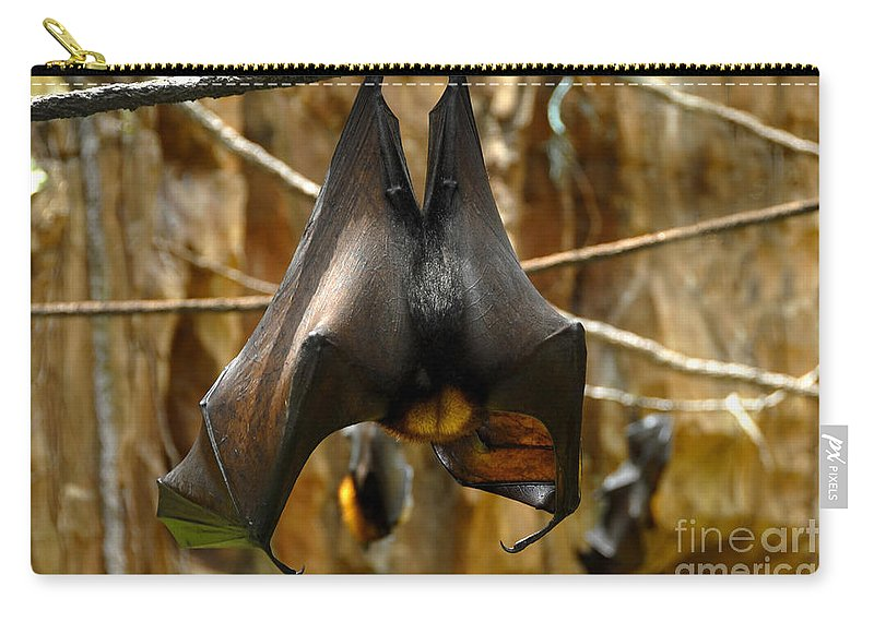 Bats Carry-all Pouch featuring the photograph Bats by David Lee Thompson