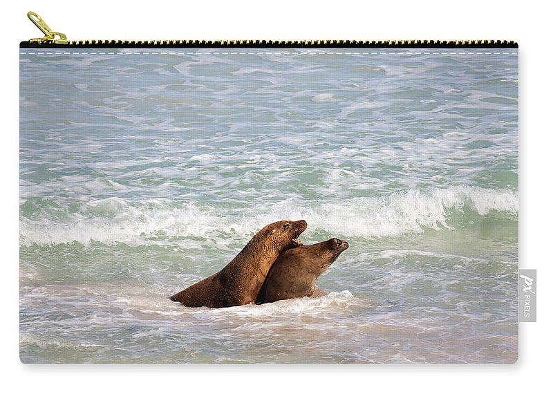 Sea Lion Carry-all Pouch featuring the photograph Battle For The Beach by Mike Dawson