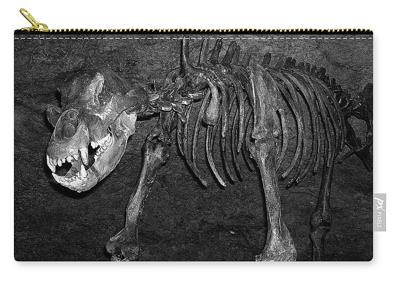 Europe Carry-all Pouch featuring the photograph Be Nice ... by Juergen Weiss