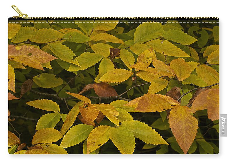 Landscape Carry-all Pouch featuring the photograph Beach Leaves by Michael Peychich
