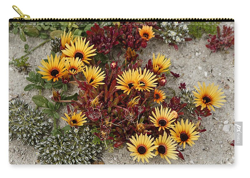 Africa Carry-all Pouch featuring the photograph Beach Potpourri by Michele Burgess