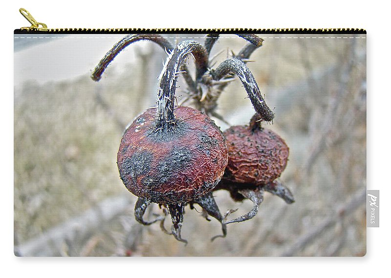 Rose Carry-all Pouch featuring the photograph Beach Rose Hips - Rosa Rugosa by Mother Nature