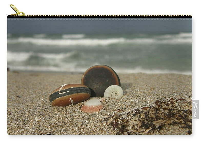 Sea Bean Carry-all Pouch featuring the photograph Beach Treasures 1 by Kimberly Mohlenhoff