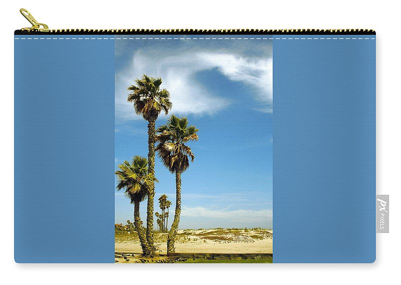 Palm Carry-all Pouch featuring the photograph Beach View With Palms And Birds by Ben and Raisa Gertsberg