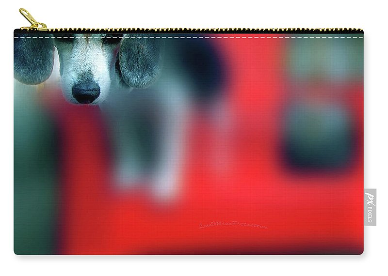 Posters Carry-all Pouch featuring the digital art Beagle Beba Portrait by Miss Pet Sitter