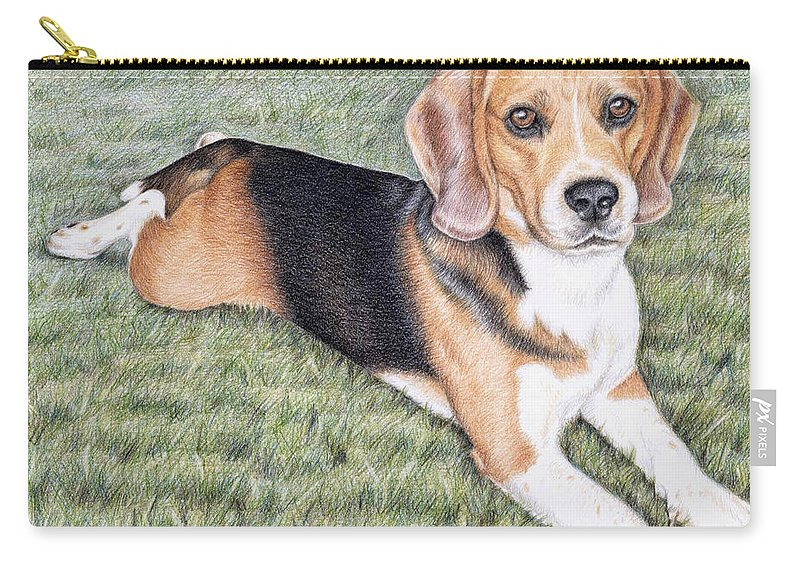 Dog Carry-all Pouch featuring the drawing Beagle by Nicole Zeug