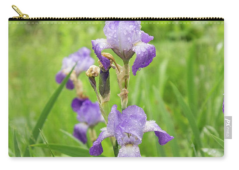 Iris Carry-all Pouch featuring the photograph Bearded Iris by Adam Gladstone