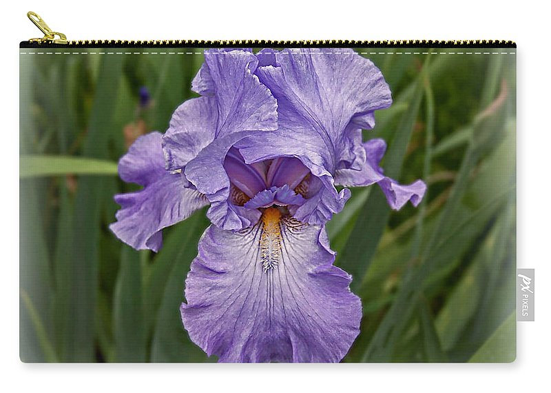 Photography By Suzanne Stout Carry-all Pouch featuring the photograph Bearded Iris by Suzanne Stout