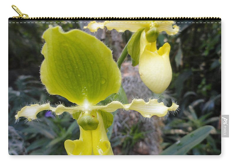 Orchids Carry-all Pouch featuring the photograph Bearded Ladies by Trish Hale