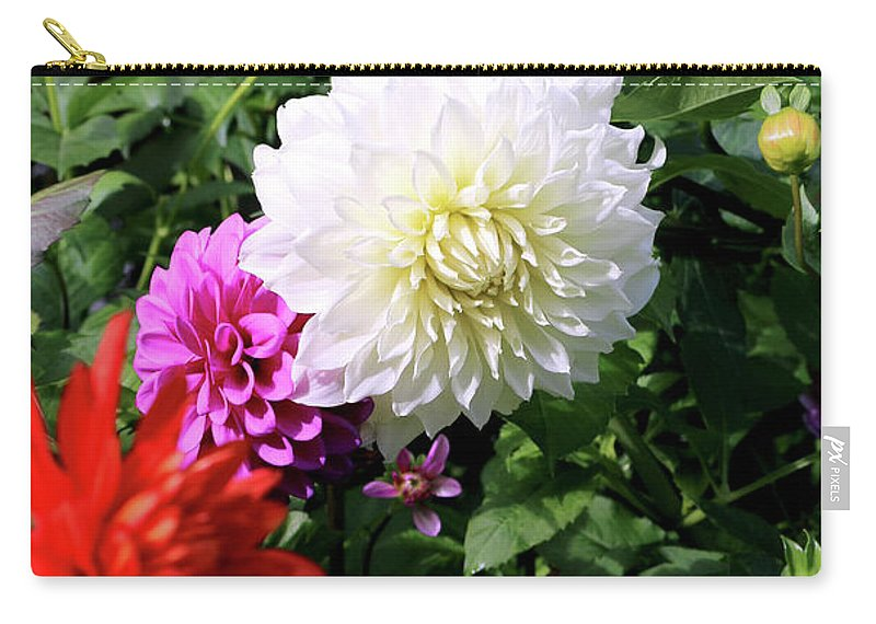 Outdoor Carry-all Pouch featuring the photograph Beautiful And Fresh Dahlias In The Butchrt Gardens,vancouver Island 1. by Andrew Kim
