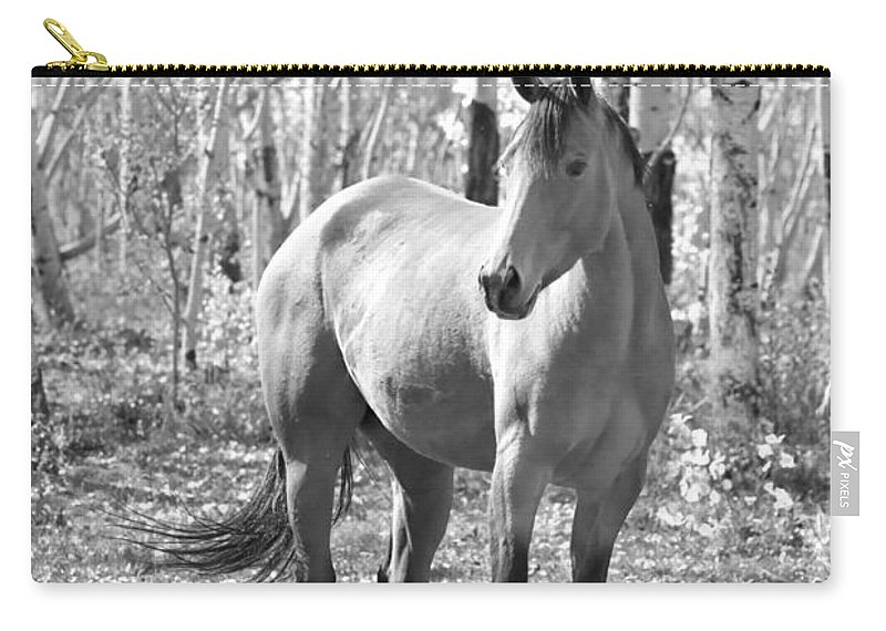 Equine Carry-all Pouch featuring the photograph Beautiful Horse In Black And White by James BO Insogna