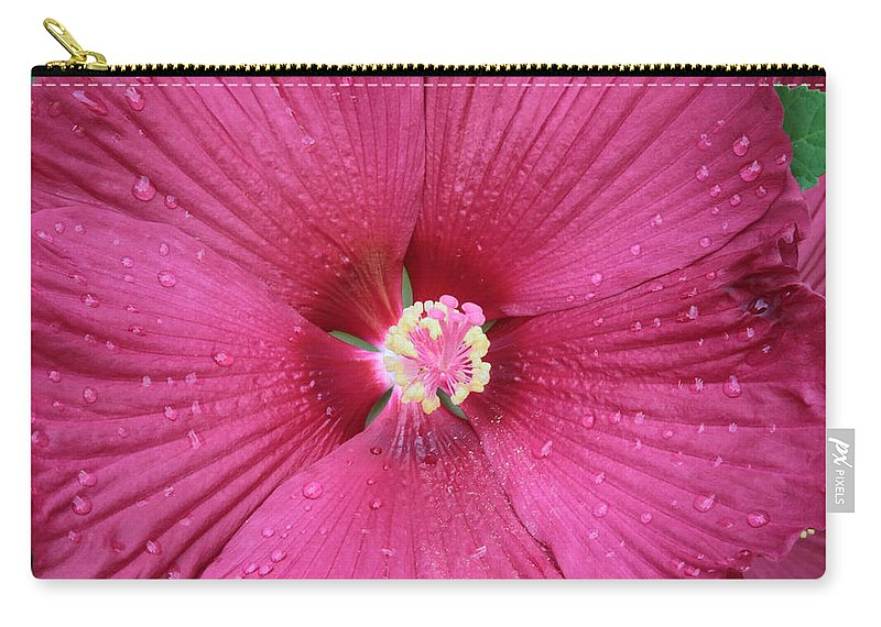 Hibiscus Carry-all Pouch featuring the photograph Beautiful Large Hibiscus by Carol Groenen