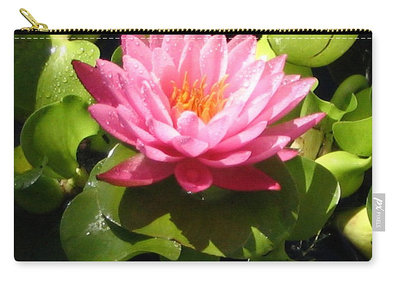 Nature Carry-all Pouch featuring the photograph Beautiful by Line Gagne