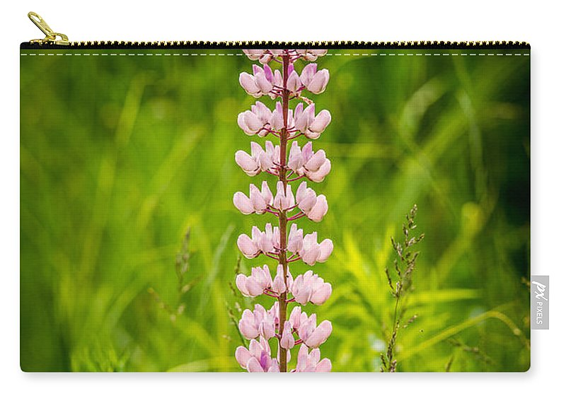 Budding Carry-all Pouch featuring the photograph Beautiful Lupine by Paul Freidlund