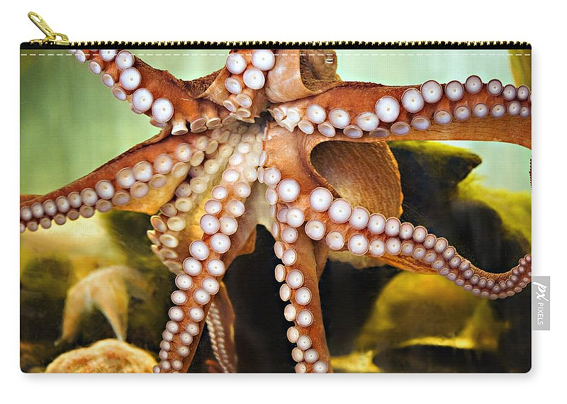 Octopus Carry-all Pouch featuring the photograph Beautiful Octopus by Marilyn Hunt