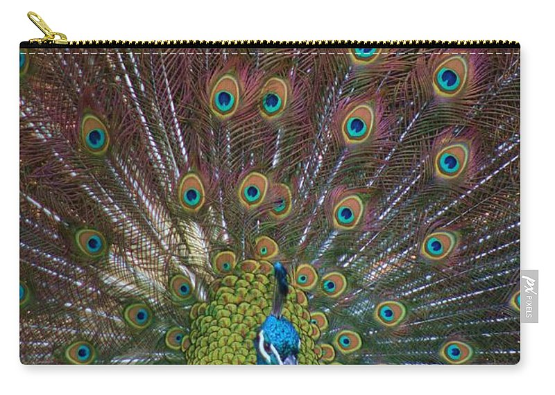 Peacock Carry-all Pouch featuring the photograph Beautiful Peacock by Tina Meador
