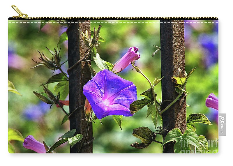 Railroad Vine Flower Carry-all Pouch featuring the photograph Beautiful Railroad Vine Flower II by Mariola Bitner
