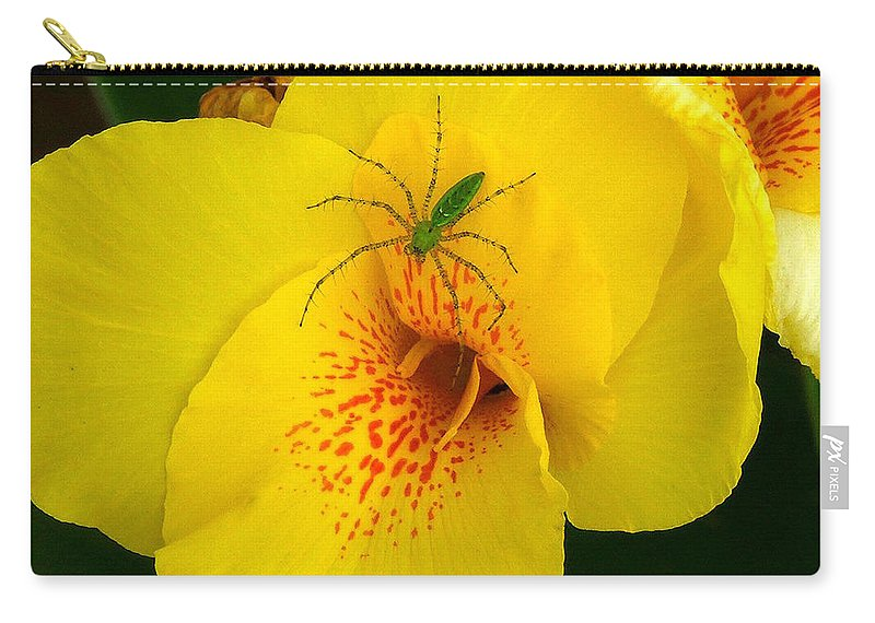 Spider Carry-all Pouch featuring the photograph Beauty And The Beast by Robert Meanor