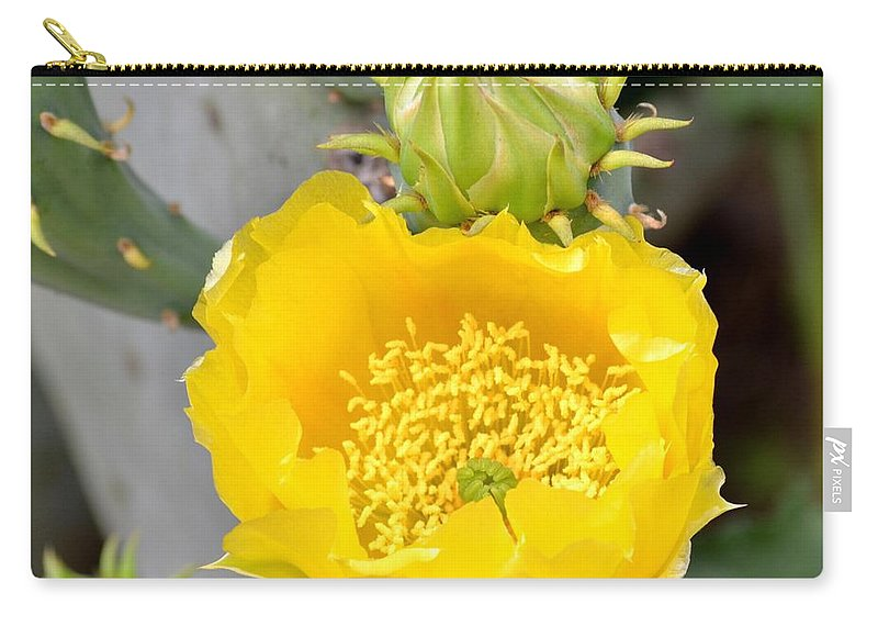 Beauty Carry-all Pouch featuring the photograph Beauty Begets Beauty by Maria Urso