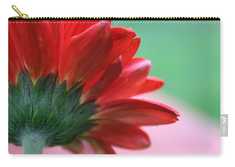 Flowers Carry-all Pouch featuring the photograph Beauty From Behind by Linda Sannuti