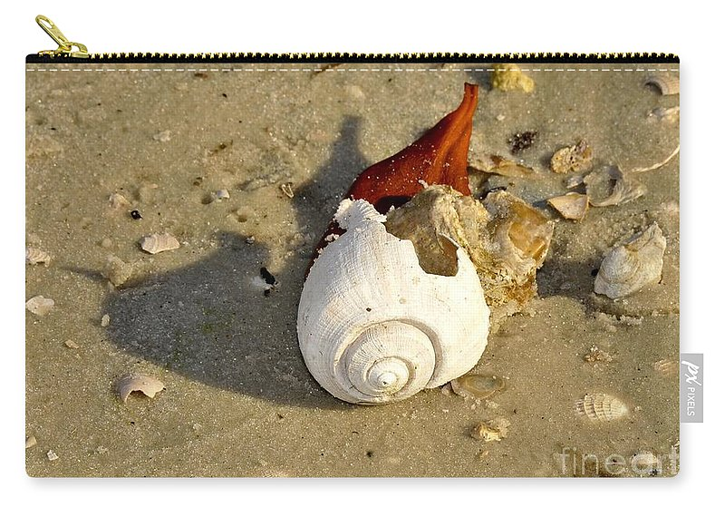 Shell Carry-all Pouch featuring the photograph Beauty From The Sea by David Lee Thompson