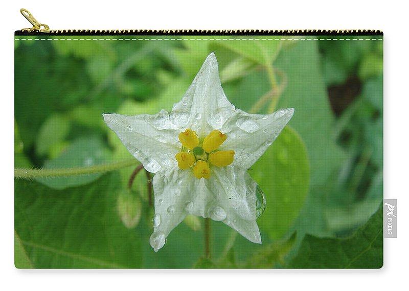 Green Flower White Water Drop Carry-all Pouch featuring the photograph Beauty In All Sizes by Luciana Seymour