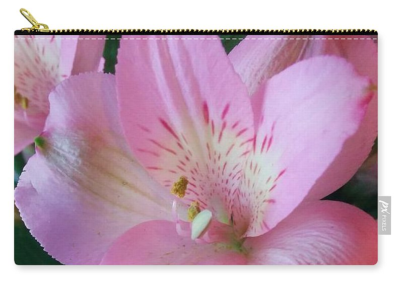 Pink Flowers Carry-all Pouch featuring the photograph Beauty In Pink by Katie Neese