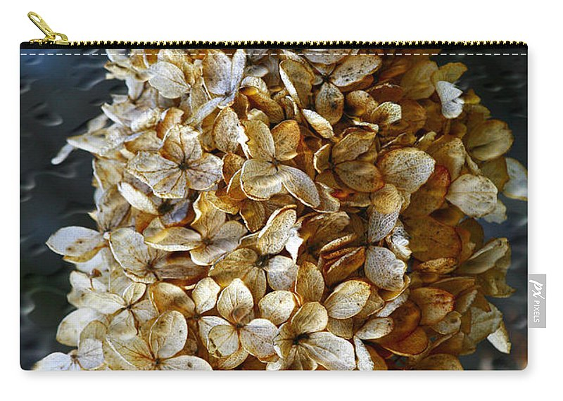 Flower Carry-all Pouch featuring the photograph Beauty Of Old by Deborah Benoit