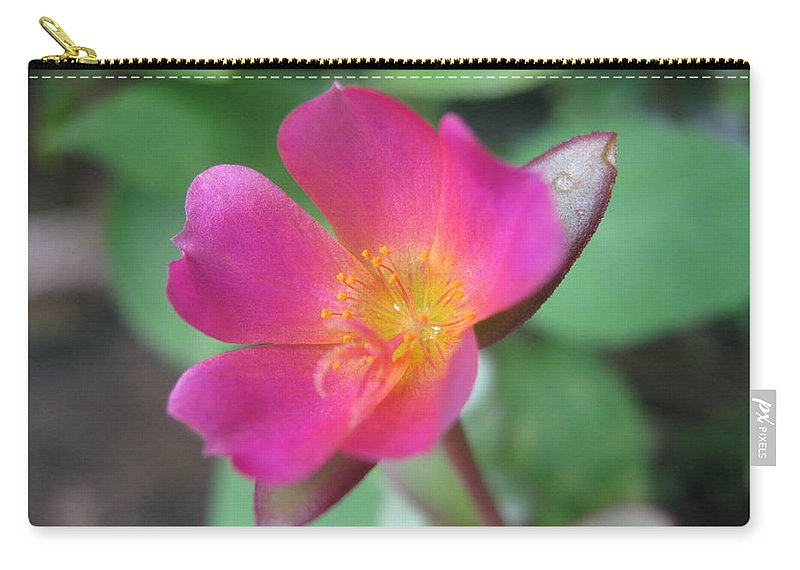 Beauty Carry-all Pouch featuring the photograph Beauty by Sandun Somarathna