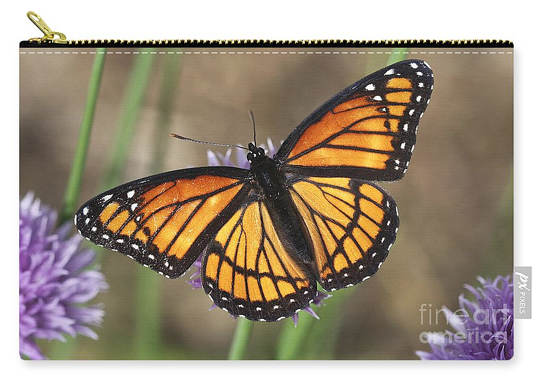 Carry-all Pouch featuring the photograph Beauty With Wings by Deborah Benoit