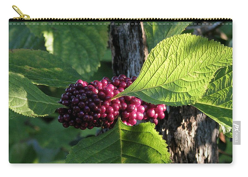 Nature Carry-all Pouch featuring the photograph Beautyberry 2 by Peg Urban