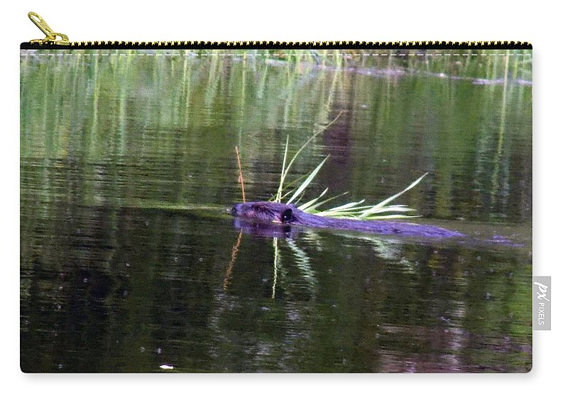 Beaver Carry-all Pouch featuring the photograph Beaver Carrying A Reed by William Tasker