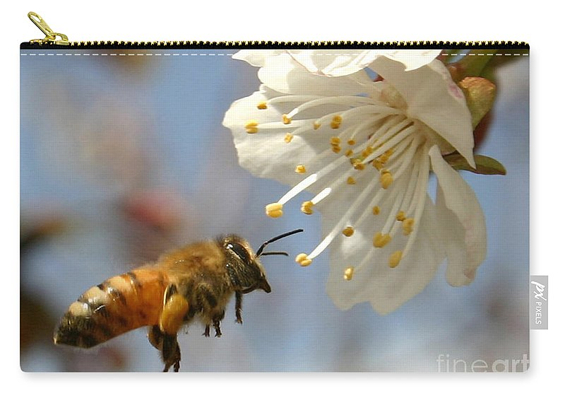Honey Carry-all Pouch featuring the photograph Bee And A Blossom by Danny Yanai