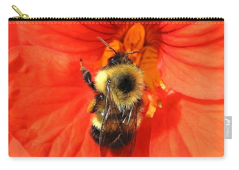 Bee Carry-all Pouch featuring the photograph Bee And Nasturtium by Will Borden
