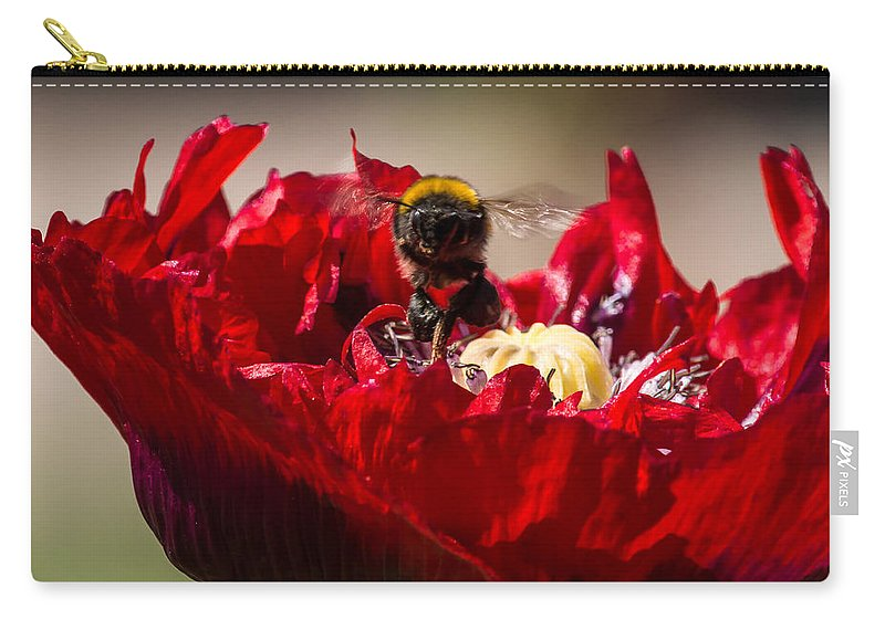 Flowers & Plants Carry-all Pouch featuring the photograph Bee Front With Red Flower by Jacek Wojnarowski