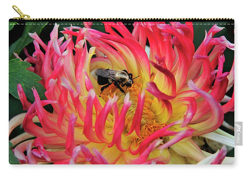 Flower Carry-all Pouch featuring the photograph Bee In Dahlia by David Arment