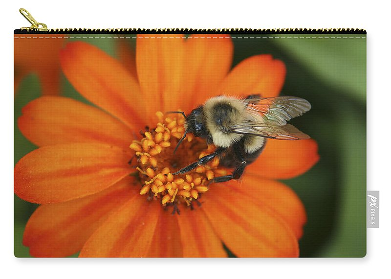 Bee Carry-all Pouch featuring the photograph Bee On Aster by Margie Wildblood