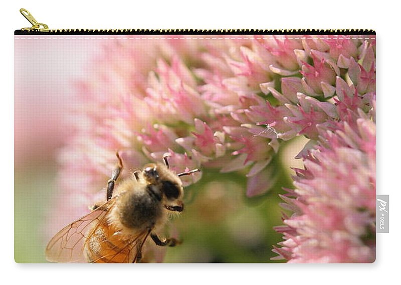Bee Carry-all Pouch featuring the photograph Bee On Flower 3 by Angela Rath