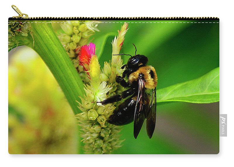 Nature Carry-all Pouch featuring the photograph Bee On Flower by Susan Cliett