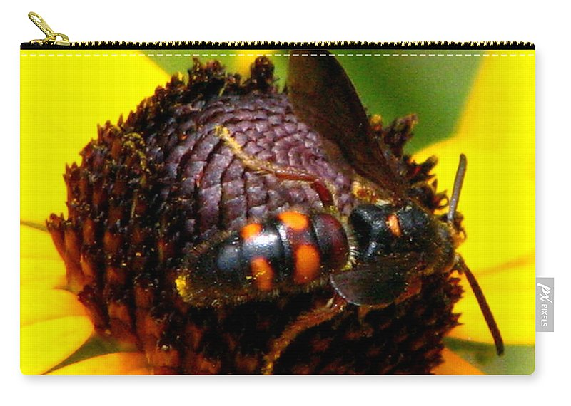 Lazy Susan Carry-all Pouch featuring the photograph Bee On Lazy Susan 4 by J M Farris Photography