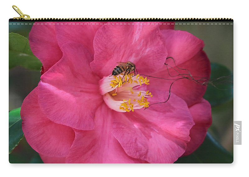 Pink Camellia Carry-all Pouch featuring the photograph Bee On Pink Camellia by Carol Groenen