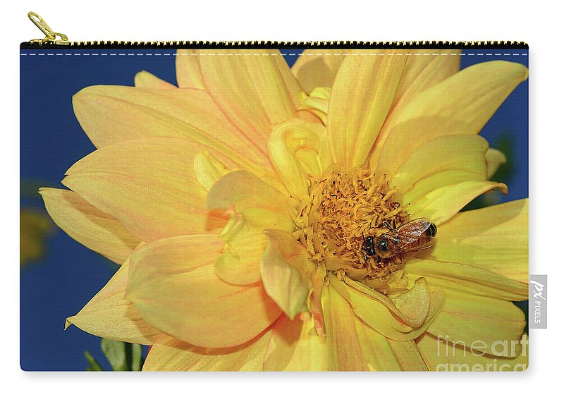 Bee On Pretty Dahlia Carry-all Pouch featuring the photograph Bee On Pretty Dahlia By Kaye Menner by Kaye Menner