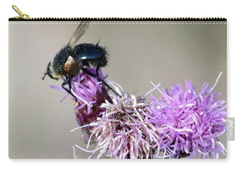 Bee Carry-all Pouch featuring the photograph Bee On Thistle by Darla Wells